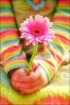 a_flower_of_hope_by_loolah.jpg